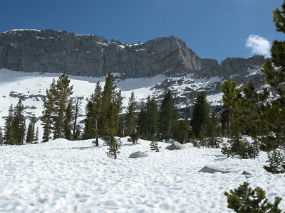 Just above 10,000 feet ASL, and snow still dominated.