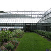 the 4000 sq ft greenhouse, which grows all seasonal plants used for display throughout all the gardens and the estate