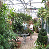 inside the main greenhouse