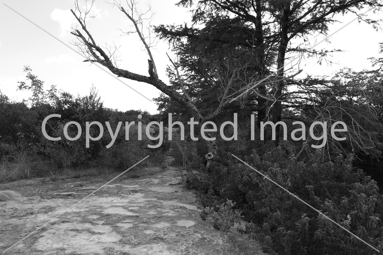 McKinney Falls0260