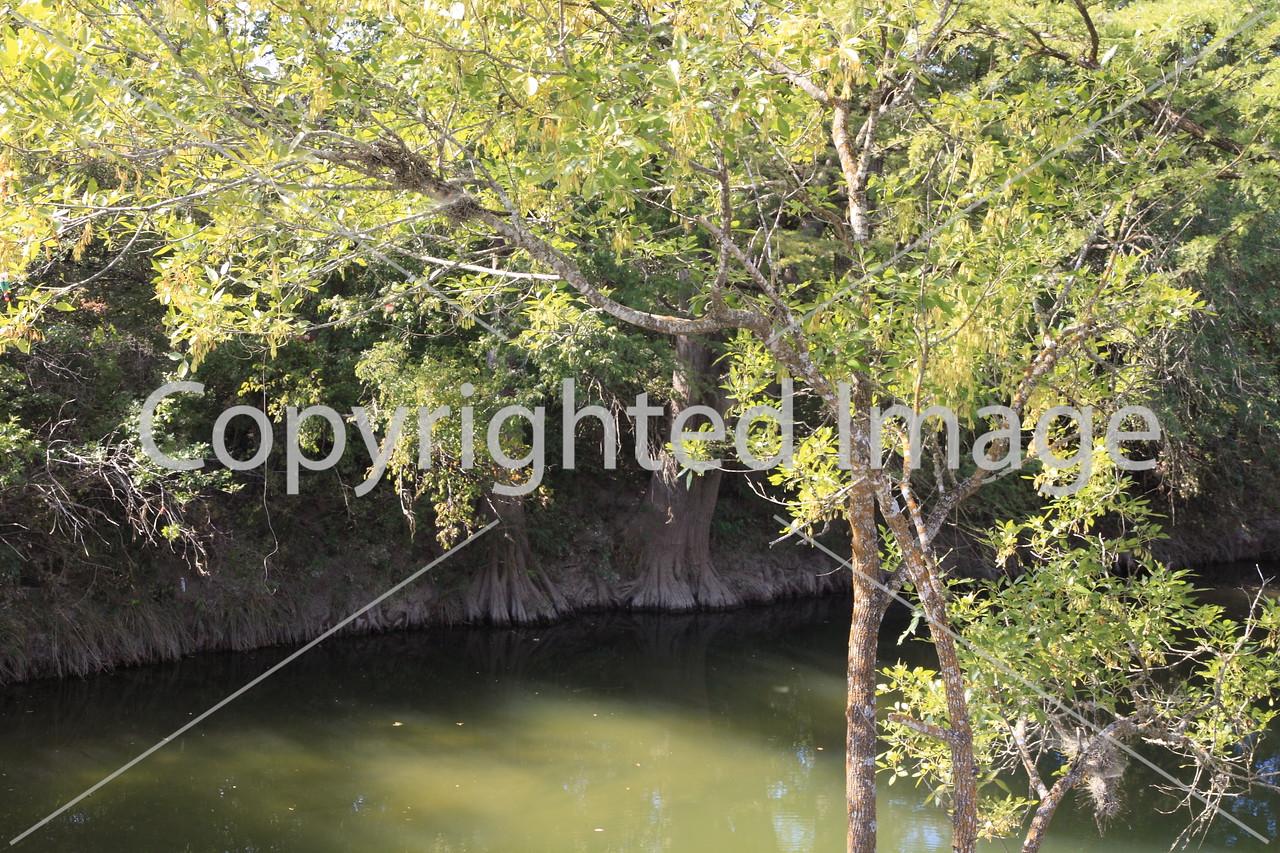 McKinney Falls 0264
