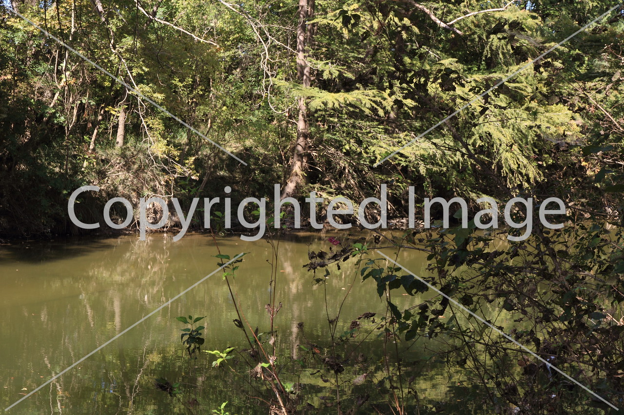 McKinney Falls 0233