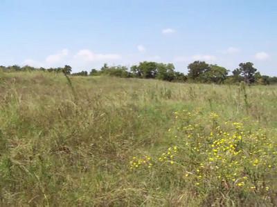 Meadow Preserve - Videos