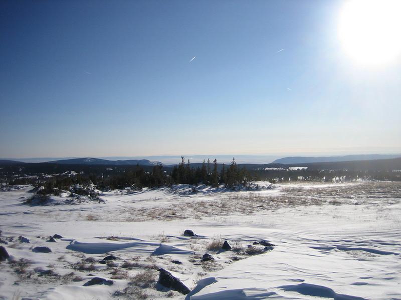 Medicine Bow Mountains area