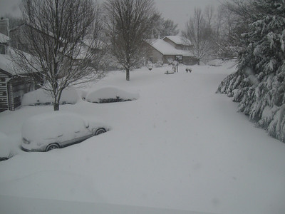 MegaStorm Feb 2010