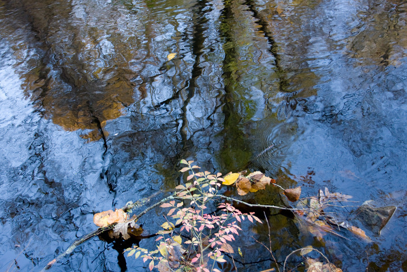 Mianus Gorge Preserve - Fall 2009 - Reflections in Mianus River