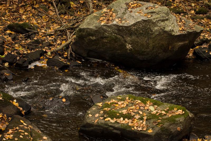 Mianus Gorge Preserve - Fall 2009 - Mianus River