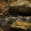Mianus Gorge Preserve - Fall 2009 - Mianus River