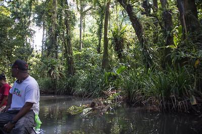 Yela Conservation Area, Kosrae, FSM