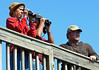 Birders stand on an elevated platform as they watch for migrating raptors.  (The Reporter/Geoff Patton)