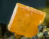 Wulfenite; Loudville; FOV ~ 5.1 mm