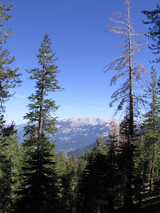 Looking north to Alta Peak from Timber Gap (9450 feet elevation) across the drainage of the Middle Fork Kaweah River.