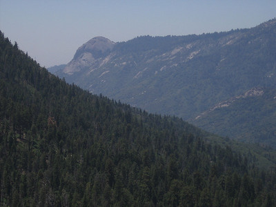 View west to Moro Rock, a granitic dome along the north slope of the Middle Fork Kaweah River. The road to Crescent Meadow goes near Moro Rock and from that point there is a short trail to its top. Some of the trees in the lower foreground have the rounded tops characteristic of Giant Sequoias.