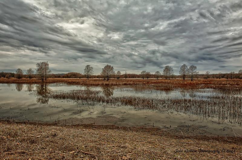 Mingo Wetlands #1