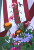 "Abstract ""painted dasies"" and wall, York, Maine"