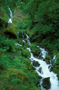 Wahkeena Falls-Columbia River Gorge, Oregon