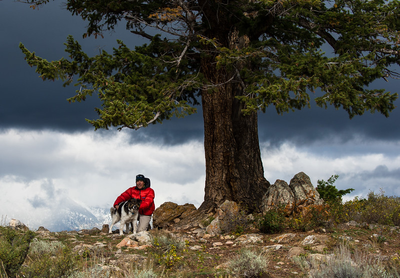 "A boy and his dog beneath the ""Marriage Tree"" , above Gros Ventre River, Wyoming."
