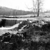 Dillard Mill-10