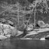 Pickle Creek Trail, Hawn State Park