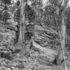 Rockwoods Reservation-0388