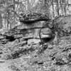 Rockwoods Reservation-0380