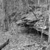 Rockwoods Reservation-0376