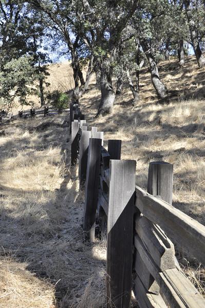 Mitchell Canyon, Clayton CA.  Mt. Diablo State Park