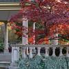 Mo Botanical Garden 110812-6