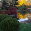 Mo Botanical Garden 110812-16