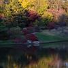 Mo Botanical Garden 110812-14