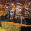 Mo Botanical Garden 110812-1