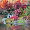 Mo Botanical Garden 110812-15