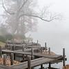 Mo Botanical Garden 112112-16