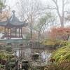 Mo Botanical Garden 112112-2