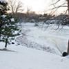 Mo Botanical Garden Dec 26 2010-12