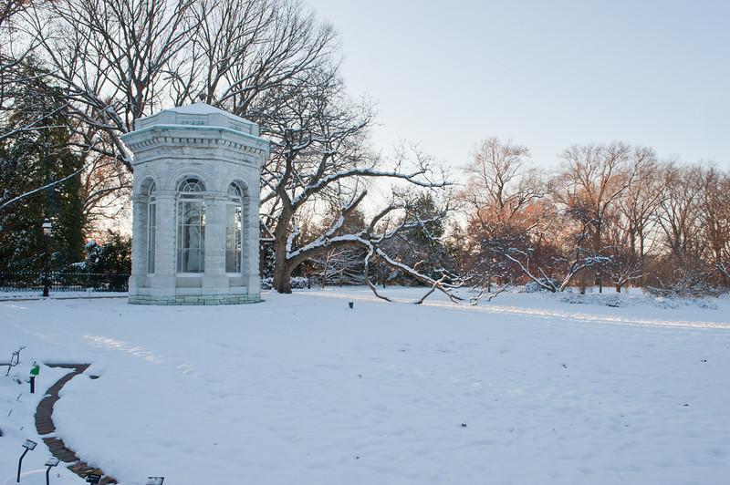 Mo Botanical Garden Dec 26 2010-1