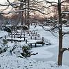 Mo Botanical Garden Dec 26 2010-17