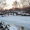 Mo Botanical Garden Dec 26 2010-18