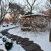 Mo Botanical Garden Dec 26 2010-14