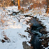 Mo Botanical Garden Dec 26 2010-9