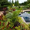 Mo Bot Garden Wide Angle Shots-3