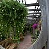 Mo Bot Garden Wide Angle Shots-8