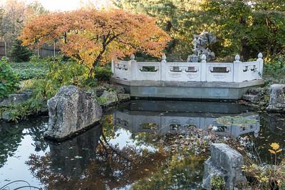 Mo Botanical Garden November 20 2016