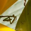 preying mantis MBG 090712-8