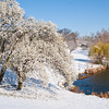 Spring Snow Saint Louis March 27 2011-1