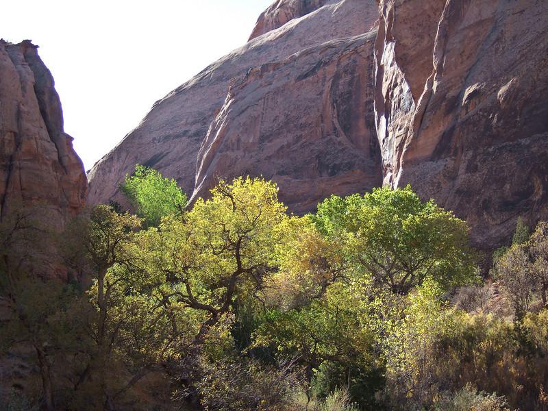Moab Utah AMGA Meetings October-November 2009