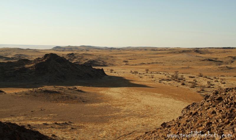 Gobi Desert landscape, Ikh Nart Nature Reserve, Mongolia