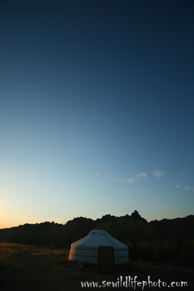 Mongolian ger -- aka yurt -- at sunset, Gobi Desert, Mongolia