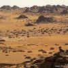 Argali ram (Ovis ammon) overlooking Gobi Desert landscape, Ikh Nart Nature Reserve, Mongolia