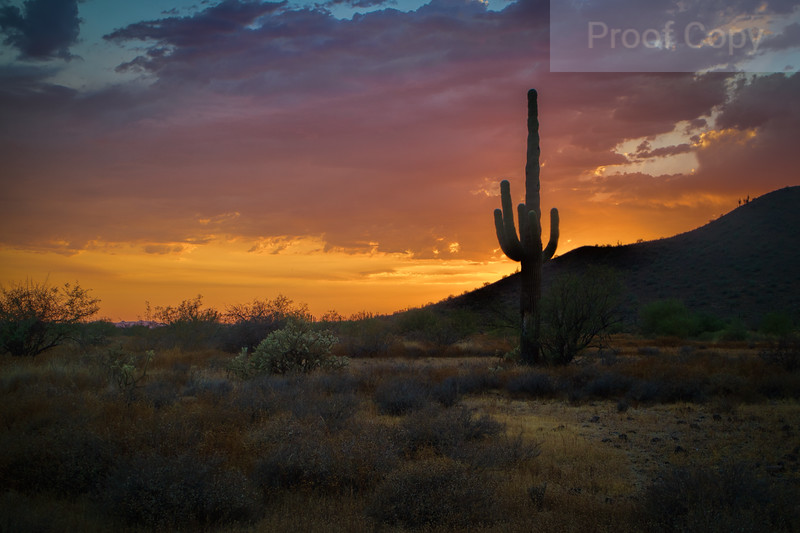 Arizona Summer Monsoon Sunset 2